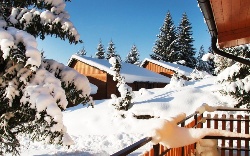 Holiday Park Orava***